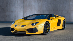 Пороги Hamann для Lamborghini Aventador