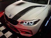 Наклейки на кузов Performance для BMW M2 F87