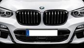 Решетки радиатора M Performance для BMW X4 G02