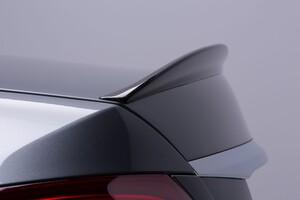 Карбоновый спойлер Lorinser для Mercedes W213