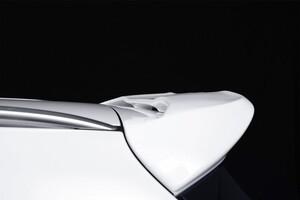 Спойлер Piecha для Mercedes S205